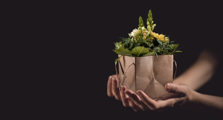 flowers-1338641_1280