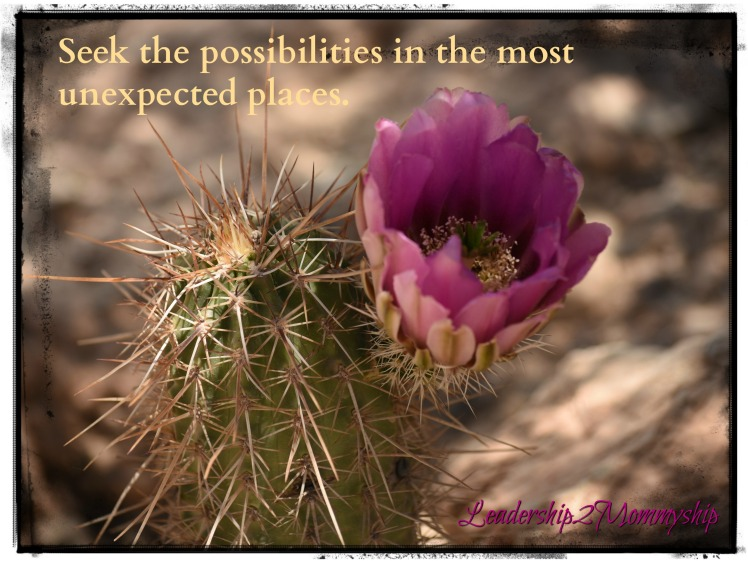 Seek the Possible